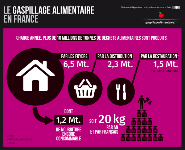 17.08.Encadre.infographie.gaspillage.alimentaire.MINISTEREECOLOGIE