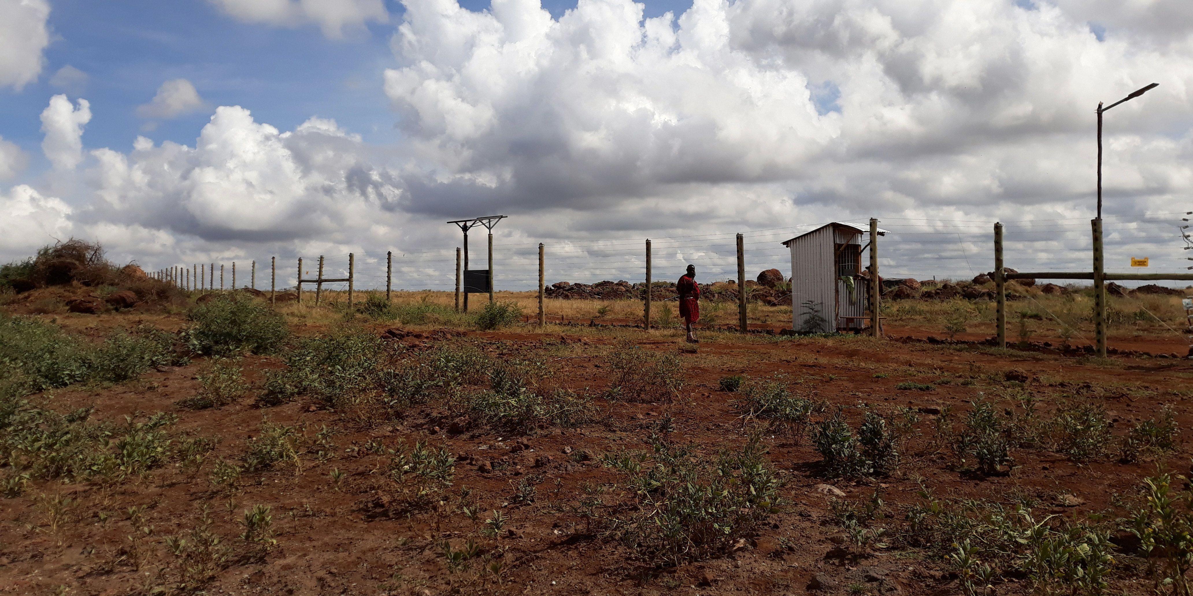 73 hectares de plantation au coeur d'une réserve naturelle  (2)