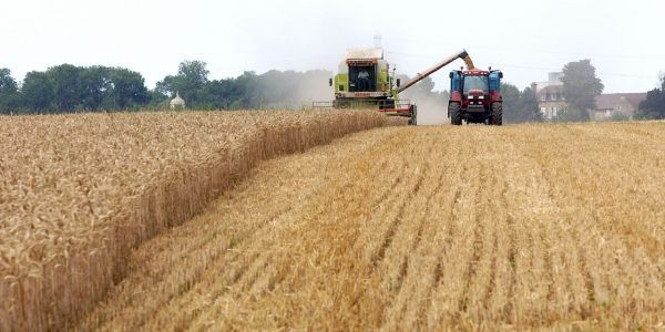 agriculture, tracteur, afp, 1280