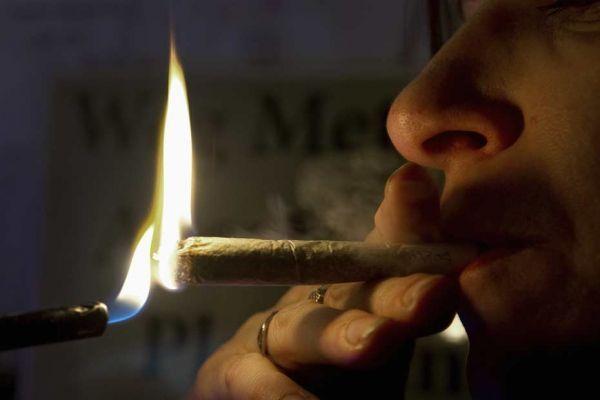 cannabis 930