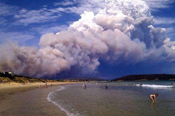incendies en tasmanie