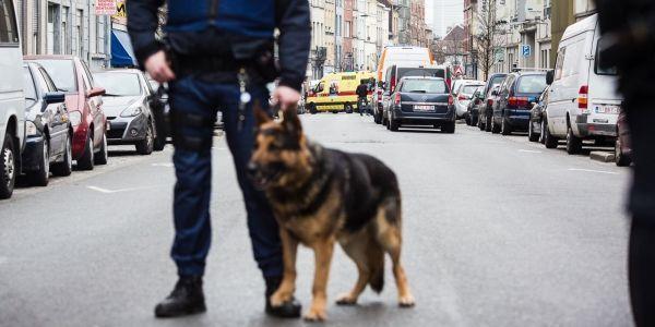 Le jour de l'arrestation de Salah Abdeslam à Molenbeek.