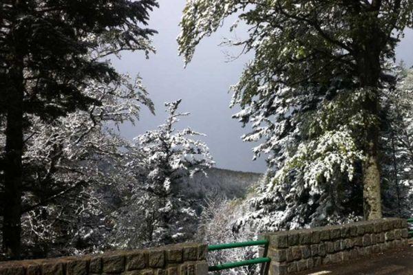 neige-fred-michel