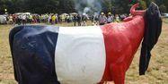 06.09.Agriculture eleveur vache bovin france.GUILLAUME SOUVANT  AFP.1280.640