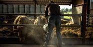 Agriculteur éleveur 1280