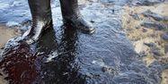 marée noire Californie AFP 1280