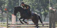 Epreuve d'équitation à Rio (1280x640) Yasuyoshi CHIBA/AFP