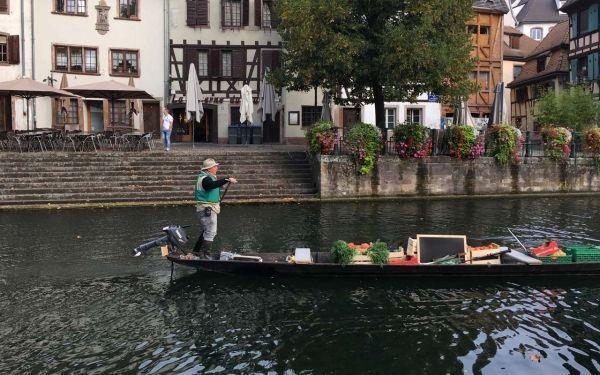barque4