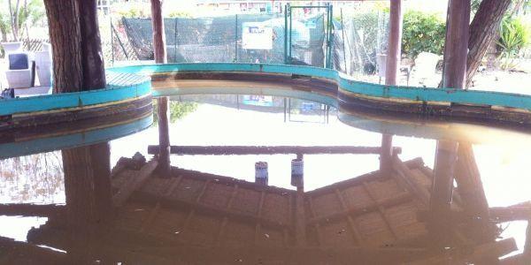 bassin-des-raies-toutes-son