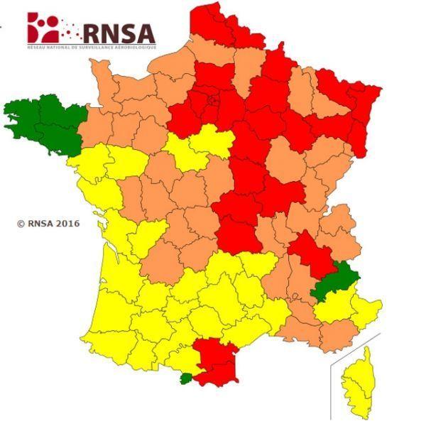 Allergies : les régions à éviter en fonction des saisons