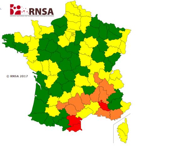 Carte du RNSA sur les pollens