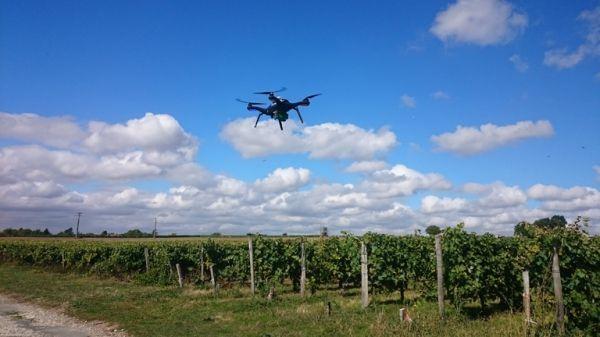 Les drones peuvent survoler les champs de très haut mais également au plus près des plantes pour une précision maximale © Airinov