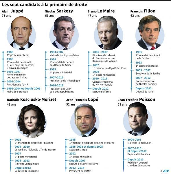 infographie candidats primaire