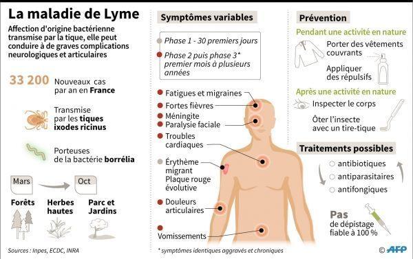 maladie de Lyme crédit : LAURENCE SAUBADU, PAUL DEFOSSEUX / AFP