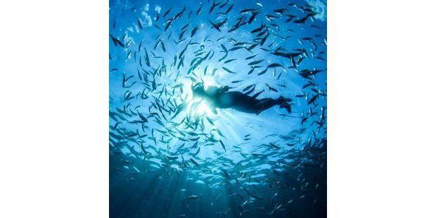 mer ocean 640 AFP
