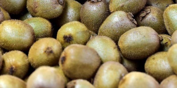 Endives, radis noir, kiwi... Ces aliments à déguster pour bien passer l'hiver