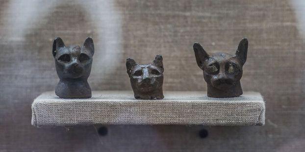 chats datant site rencontres à Lewisburg WV