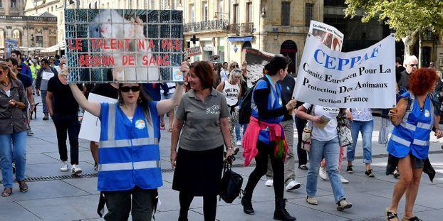 Une quinzaine d'associations, d'obédience diverse, étaient présentes dimanche à Bordeaux.
