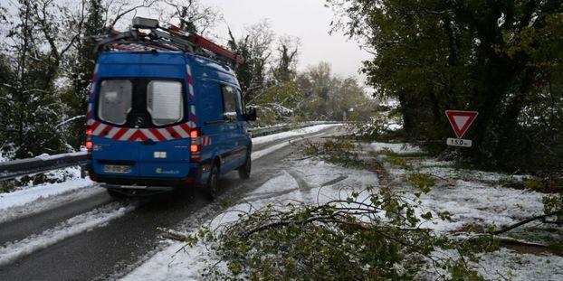 Chutes de neige : 33.000 foyers encore privés d'électricité en Rhône-Alpes