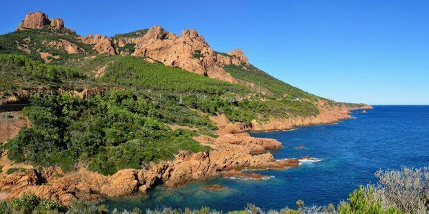 Entre la garrigue et la Méditerranée, randonnée dans le massif de l'Esterel