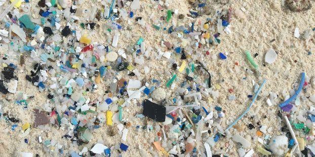 Gobelets, pailles, emballages... Le plastique au cœur de la loi anti-gaspillage