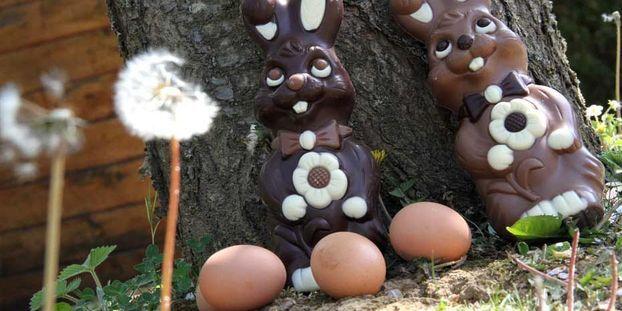 Paques Pourquoi Des œufs Des Cloches Et Un Lapin