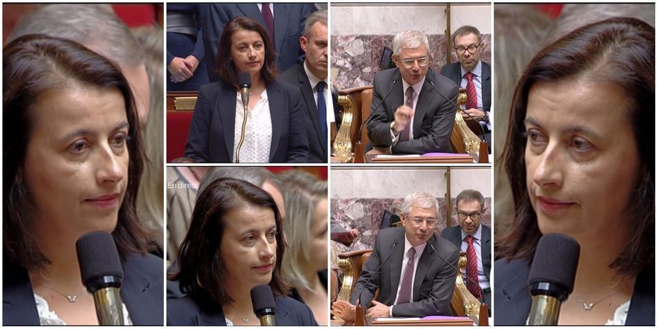 Cécile Duflot demande en vain une minute de silence à l'Assemblée en hommage à Rémi Fraisse