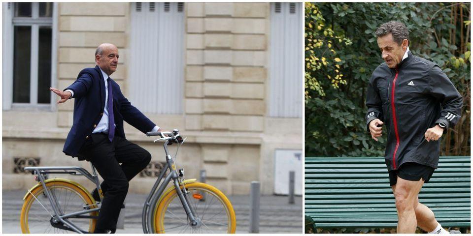 De sondage en sondage : Juppé réussit mieux son avancée que Sarkozy son retour