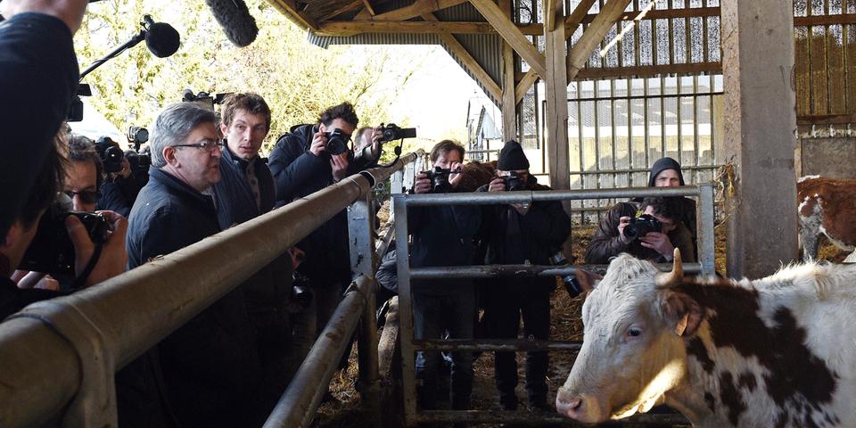 La France insoumise en tête du classement de L214 des partis qui respectent le plus les animaux (pour l'instant)
