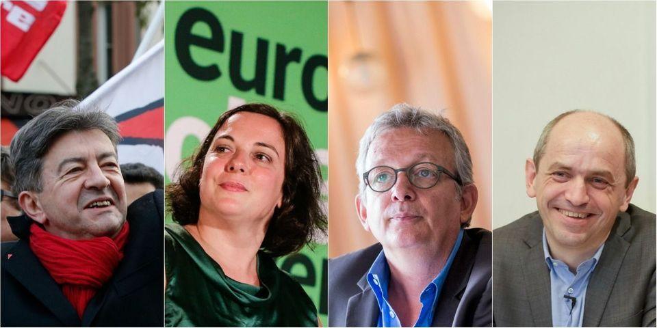 """Élections départementales : le n°2 d'EELV veut une alliance avec les forces de gauche pour """"finir devant le PS"""""""