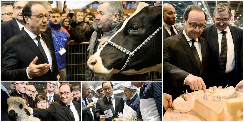 EN IMAGES – François Hollande passe son samedi matin au Salon de l'agriculture