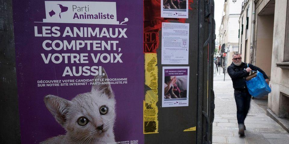 Grâce à son score aux législatives, le parti animaliste va toucher les aides de l'État (contrairement à l'UPR)