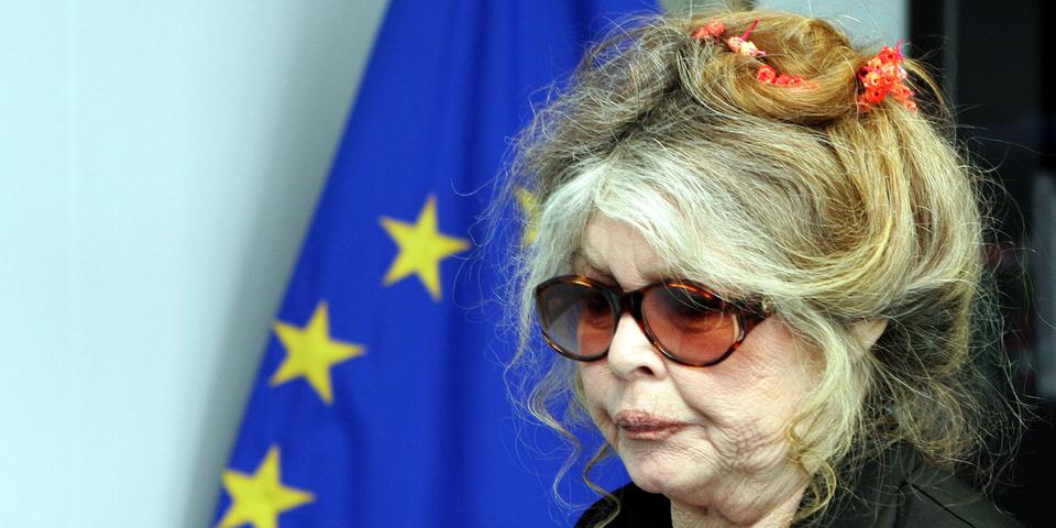 """Marine Le Pen est la """"Jeanne d'Arc du XXIe siècle"""" selon Bardot"""