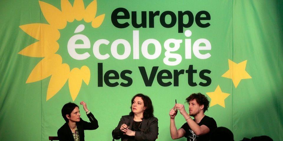 """Notre-Dame-des-Landes : EELV accuse Manuel Valls de """"passer en force"""" sur la reprise des travaux"""