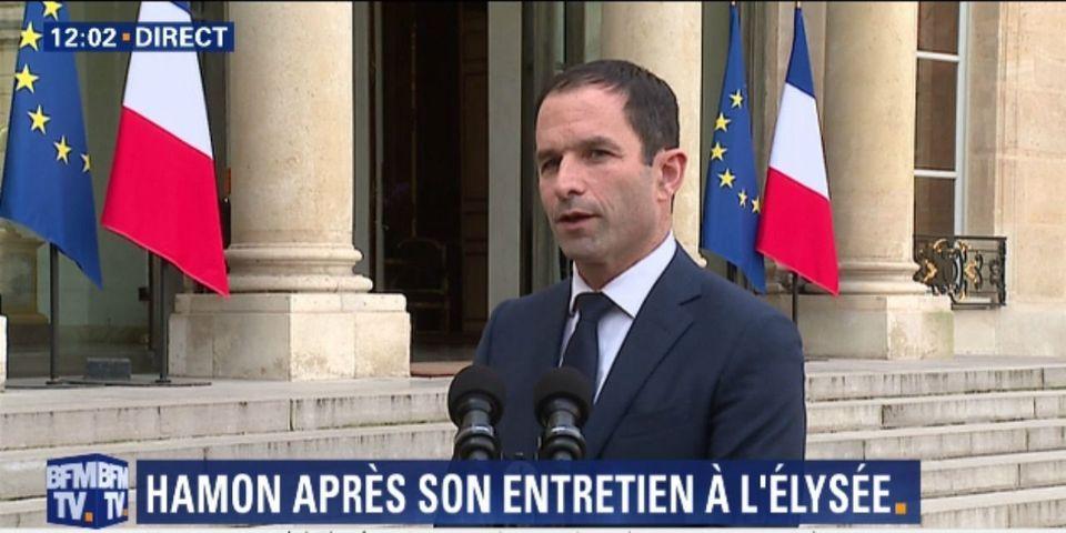 Quand Benoît Hamon explique qu'avec Hollande, ils ont parlé, lors de leur rendez-vous, de tout sauf de politique française