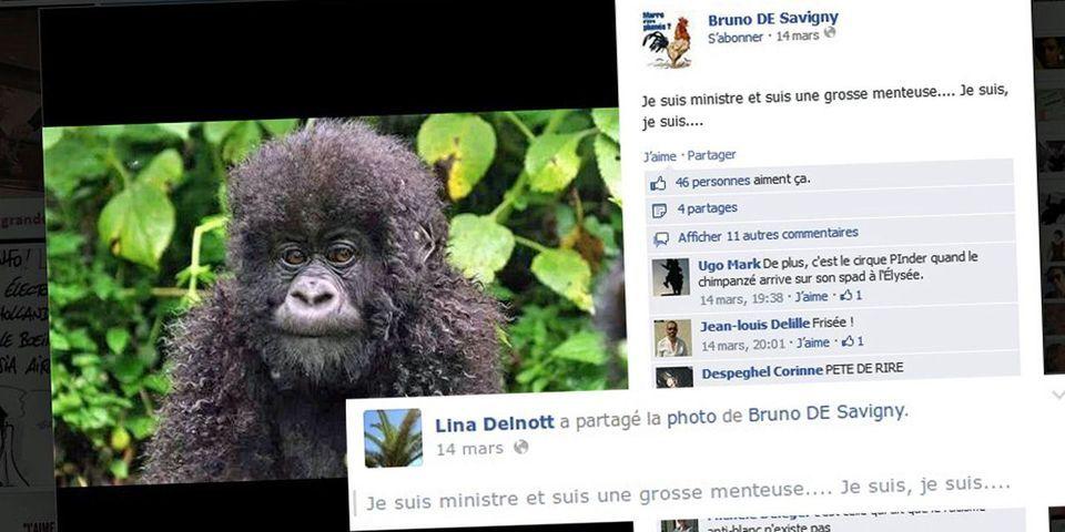 Une élue UMP partage sur Facebook une photo de singe pour critiquer Christiane Taubira