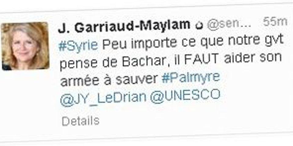 Une sénatrice UMP propose d'aider l'armée de Bachar El-Assad à sauver la ville de Palmyre