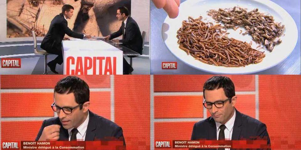Vidéo : Benoit Hamon, ministre de la consommation des insectes comestibles